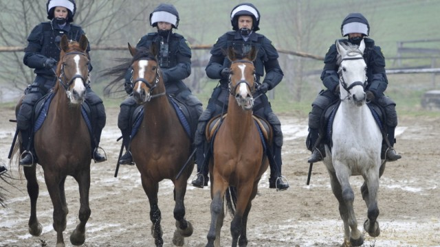 Fackelzug Wild gewordene Pferde