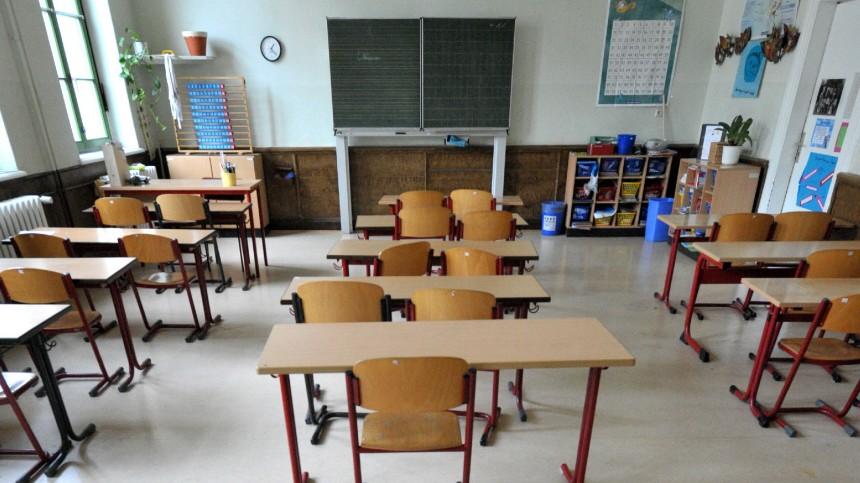 Schulausfall wegen Schweinegrippe