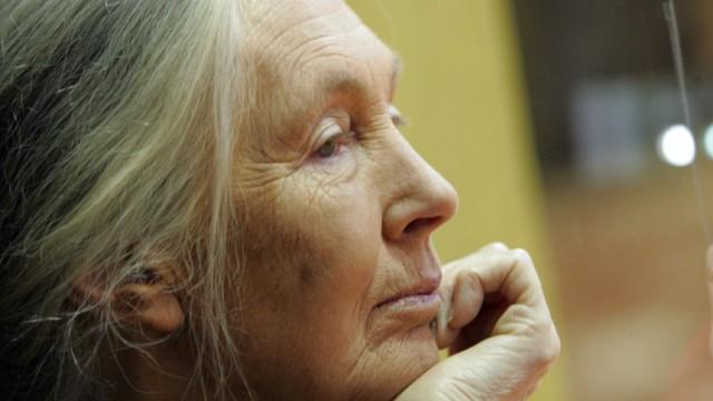 Jane Godall Jane Goodall