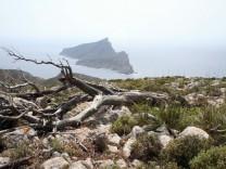 Insel der Drachen und Piraten: Mallorcas Schwester Dragonera